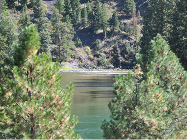 Blackfoot River Fly Fishing Guides