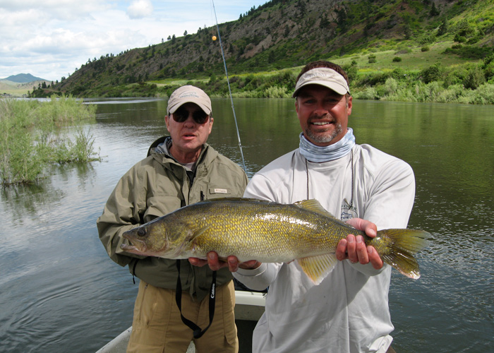 Missouri river fly fishing guides clear creek outfitters for Trout fishing in missouri