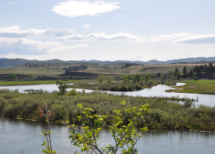 Missouri river fly fishing guides clear creek outfitters for Clear creek fishing