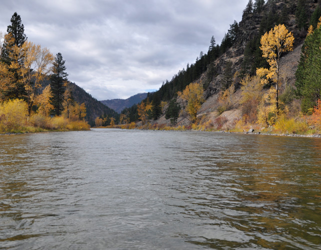 Blackfoot River Fly Fishing Natural Beauty