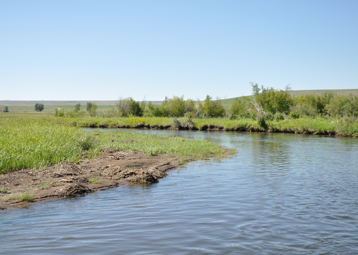 Clark fork river fly fishing guides clear creek outfitters for Clear creek fishing report